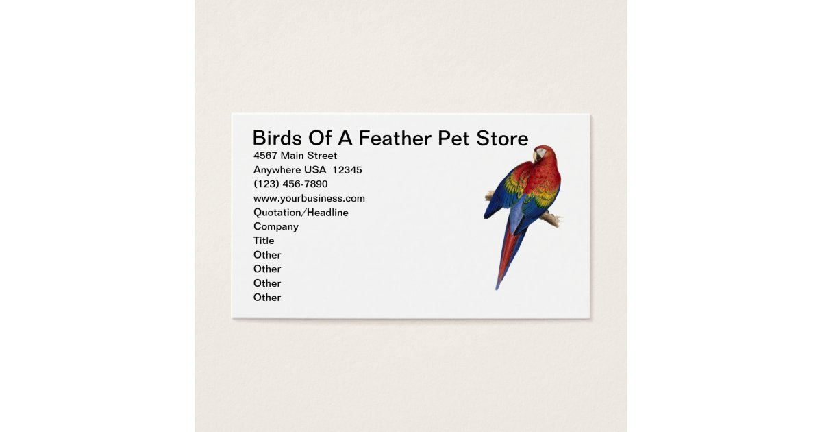 Macaw Parrot Bird Breeding Care Pet Store Business Card | Zazzle.com