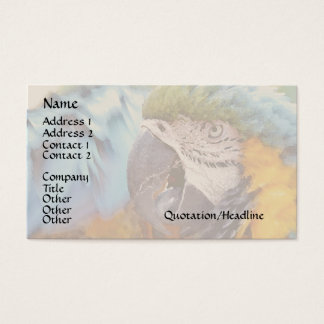 Macaw Parrot Bird Wildlife Animals Business Card