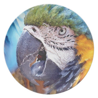 Macaw Parrot Bird Wildlife Animals Dinner Plate