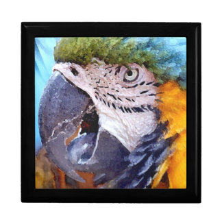 Macaw Parrot Birds Animal Wildlife Keepsake Box