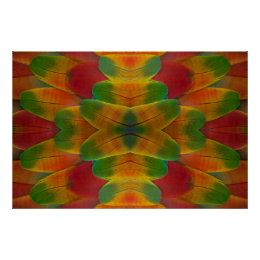 Macaw parrot feather kaleidoscope poster