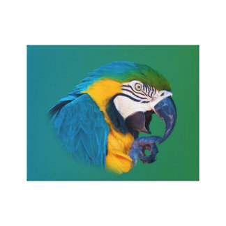 Macaw Parrot, Green and Blue, Wrapped Canvas