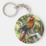 Macaw Parrot Keychain