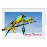 Macaw Parrot Ornament Candy Cane Christmas Card