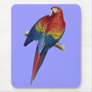 Macaw Parrot Red Yellow Blue Green Bird Mouse Pad