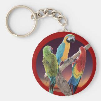 Macaw Parrots Basic Round Button Keychain