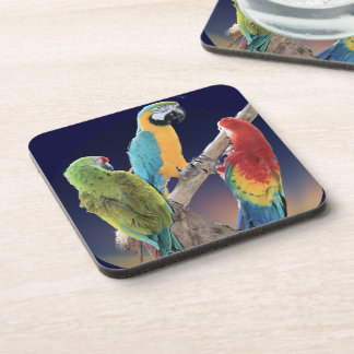 Macaw Parrots Beverage Coasters