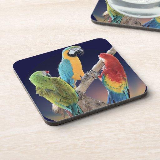 Macaw Parrots Beverage Coasters