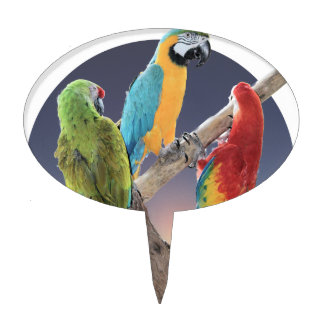 Macaw Parrots Cake Topper