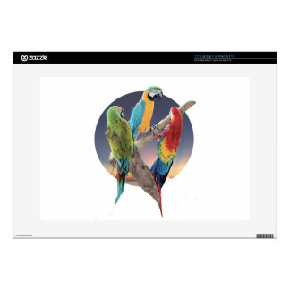 Macaw Parrots Decals For Laptops