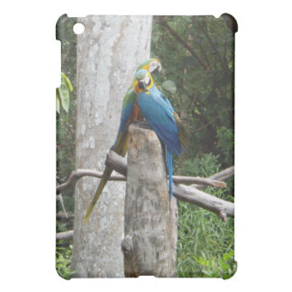 Macaw Parrots in Love ipad case