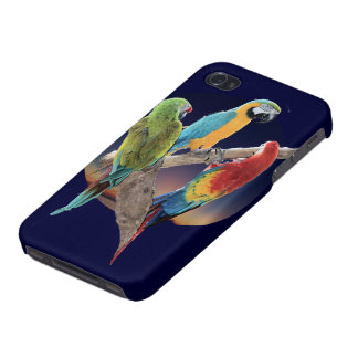 Macaw Parrots iPhone 4/4S Cases