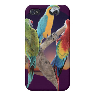 Macaw Parrots iPhone 4/4S Covers