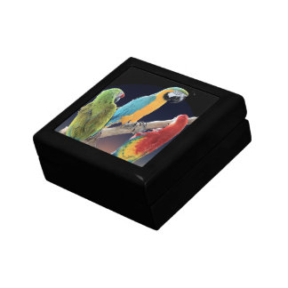 Macaw Parrots Jewelry Boxes