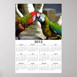 Macaw Parrots Kissing 2013 Calendar Poster