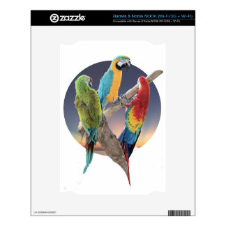 Macaw Parrots NOOK Decal