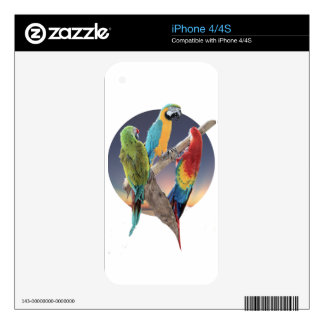 Macaw Parrots Skin For iPhone 4