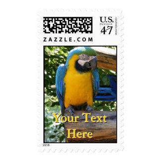 Macaw Postage