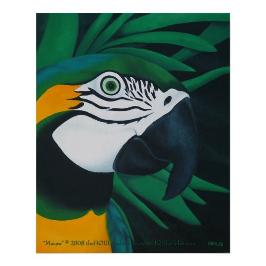 Macaw Poster