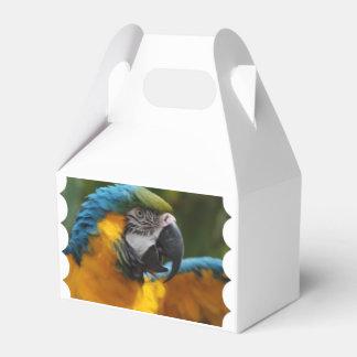 Macaw rizado del azul y del oro caja de regalos