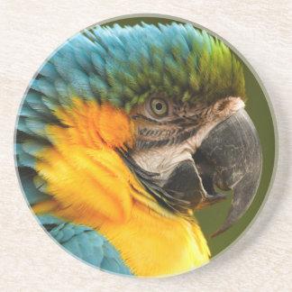 macaw rizado posavasos para bebidas