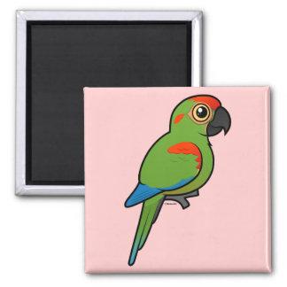 Macaw Rojo-afrontado Iman De Nevera