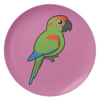 Macaw Rojo-afrontado Plato De Comida