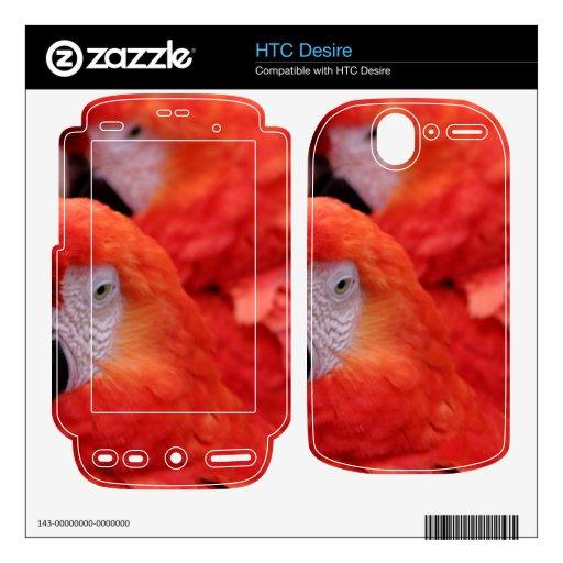 Macaw rojo del escarlata HTC desire skin