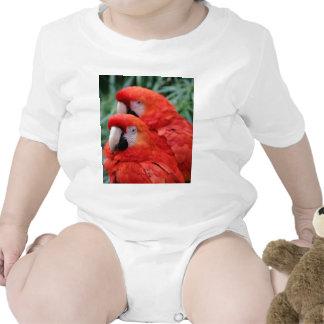 Macaw rojo del escarlata camiseta