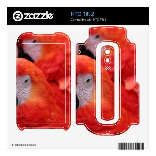 Macaw rojo del escarlata skins para HTC tilt 2