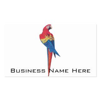 Macaw rojo tarjetas de visita