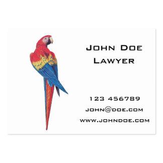 Macaw rojo tarjetas de visita grandes