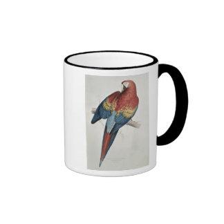 Macaw rojo y amarillo taza de dos colores