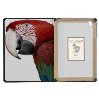 Macaw Rojo-y-verde - chloropterus del Ara