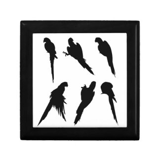 Macaw Silhouette Set Keepsake Box