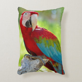 Macaw sitting on branch accent pillow