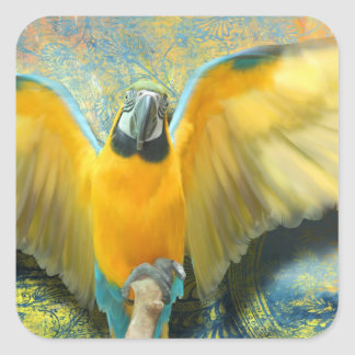 Macaw Square Sticker