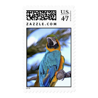Macaw Stamp