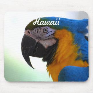 Macaw Alfombrillas De Ratones