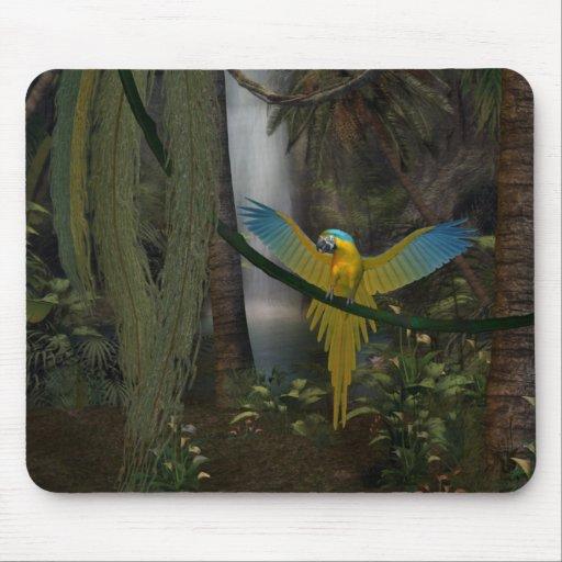 Macaw Tapete De Ratón