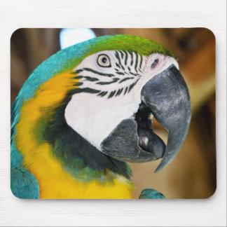 Macaw Alfombrilla De Ratones