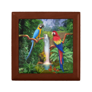 Macaw Tropical Parrots Gift Box