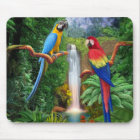 Macaw Tropical Parrots Mouse Pad