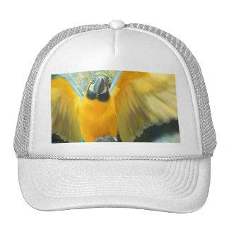 Macaw Trucker Hat