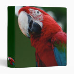 Macaw Up Close Binders