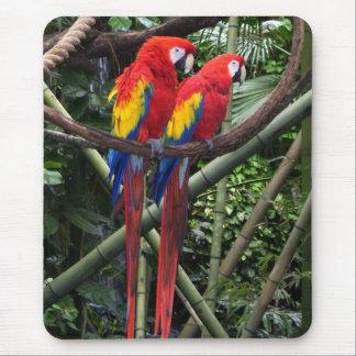 macaws alfombrilla de raton