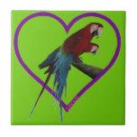 macaws azulejo ceramica
