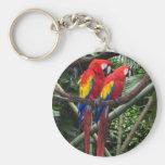macaws basic round button keychain