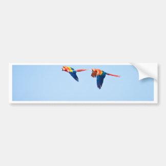Macaws Bumper Sticker