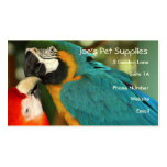 Macaws Business Cards